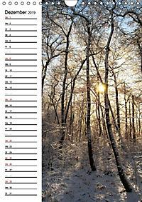 Land Brandenburg im Wechsel der Jahreszeiten (Wandkalender 2019 DIN A4 hoch) - Produktdetailbild 7