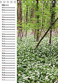 Land Brandenburg im Wechsel der Jahreszeiten (Tischkalender 2019 DIN A5 hoch) - Produktdetailbild 5