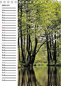 Land Brandenburg im Wechsel der Jahreszeiten (Tischkalender 2019 DIN A5 hoch) - Produktdetailbild 6