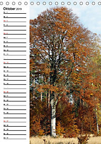 Land Brandenburg im Wechsel der Jahreszeiten (Tischkalender 2019 DIN A5 hoch) - Produktdetailbild 10