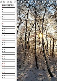 Land Brandenburg im Wechsel der Jahreszeiten (Tischkalender 2019 DIN A5 hoch) - Produktdetailbild 12