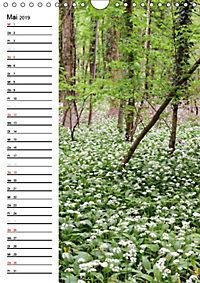 Land Brandenburg im Wechsel der Jahreszeiten (Wandkalender 2019 DIN A4 hoch) - Produktdetailbild 5
