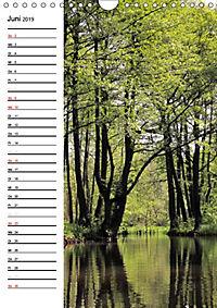 Land Brandenburg im Wechsel der Jahreszeiten (Wandkalender 2019 DIN A4 hoch) - Produktdetailbild 6