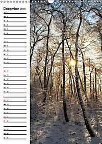 Land Brandenburg im Wechsel der Jahreszeiten (Wandkalender 2019 DIN A3 hoch) - Produktdetailbild 12
