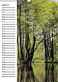 Land Brandenburg im Wechsel der Jahreszeiten (Wandkalender 2019 DIN A3 hoch) - Produktdetailbild 6