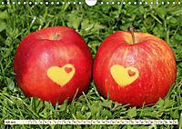 Land und Liebe (Wandkalender 2019 DIN A4 quer) - Produktdetailbild 7