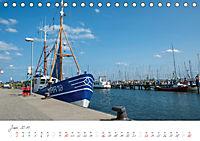 """""""Landarzt"""" - Plätze an Schlei und Ostsee (Tischkalender 2019 DIN A5 quer) - Produktdetailbild 6"""