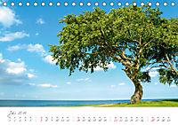 """""""Landarzt"""" - Plätze an Schlei und Ostsee (Tischkalender 2019 DIN A5 quer) - Produktdetailbild 7"""