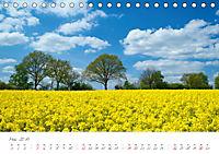 """""""Landarzt"""" - Plätze an Schlei und Ostsee (Tischkalender 2019 DIN A5 quer) - Produktdetailbild 5"""