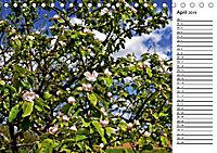 Landschaften des Kraichgaus (Tischkalender 2019 DIN A5 quer) - Produktdetailbild 4