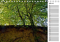 Landschaften des Kraichgaus (Tischkalender 2019 DIN A5 quer) - Produktdetailbild 7