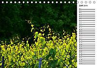Landschaften des Kraichgaus (Tischkalender 2019 DIN A5 quer) - Produktdetailbild 6