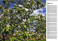 Landschaften des Kraichgaus (Wandkalender 2019 DIN A2 quer) - Produktdetailbild 4