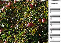 Landschaften des Kraichgaus (Wandkalender 2019 DIN A2 quer) - Produktdetailbild 10