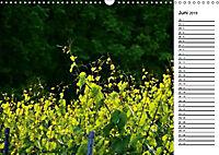 Landschaften des Kraichgaus (Wandkalender 2019 DIN A3 quer) - Produktdetailbild 5
