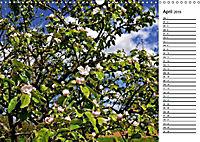 Landschaften des Kraichgaus (Wandkalender 2019 DIN A3 quer) - Produktdetailbild 3