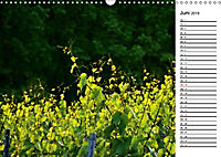 Landschaften des Kraichgaus (Wandkalender 2019 DIN A3 quer) - Produktdetailbild 6