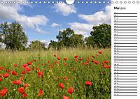 Landschaften des Kraichgaus (Wandkalender 2019 DIN A4 quer) - Produktdetailbild 5