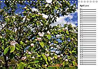 Landschaften des Kraichgaus (Wandkalender 2019 DIN A4 quer) - Produktdetailbild 4