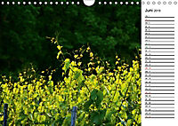 Landschaften des Kraichgaus (Wandkalender 2019 DIN A4 quer) - Produktdetailbild 6