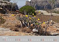 Landschaften Madagaskars (Wandkalender 2019 DIN A3 quer) - Produktdetailbild 6
