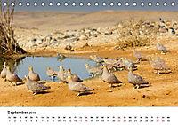 Landschaften und Vögel (Tischkalender 2019 DIN A5 quer) - Produktdetailbild 10