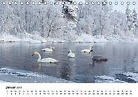 Landschaften und Vögel (Tischkalender 2019 DIN A5 quer) - Produktdetailbild 11