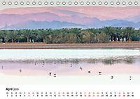 Landschaften und Vögel (Tischkalender 2019 DIN A5 quer) - Produktdetailbild 4