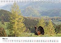 Landschaften und Vögel (Tischkalender 2019 DIN A5 quer) - Produktdetailbild 5