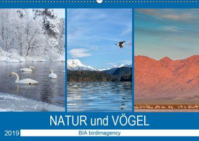 Landschaften und Vögel (Wandkalender 2019 DIN A2 quer), BIA birdimagency