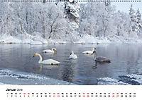Landschaften und Vögel (Wandkalender 2019 DIN A2 quer) - Produktdetailbild 1
