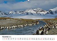 Landschaften und Vögel (Wandkalender 2019 DIN A2 quer) - Produktdetailbild 11