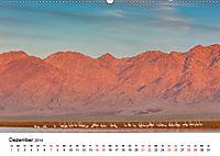 Landschaften und Vögel (Wandkalender 2019 DIN A2 quer) - Produktdetailbild 12