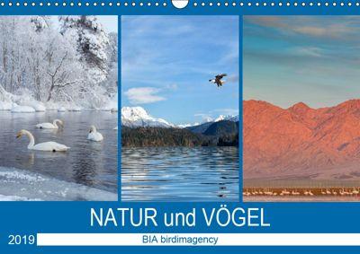 Landschaften und Vögel (Wandkalender 2019 DIN A3 quer), BIA birdimagency