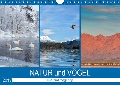 Landschaften und Vögel (Wandkalender 2019 DIN A4 quer), BIA birdimagency