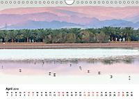 Landschaften und Vögel (Wandkalender 2019 DIN A4 quer) - Produktdetailbild 4