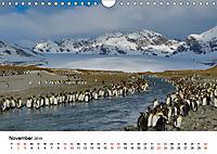 Landschaften und Vögel (Wandkalender 2019 DIN A4 quer) - Produktdetailbild 11