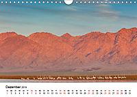 Landschaften und Vögel (Wandkalender 2019 DIN A4 quer) - Produktdetailbild 12