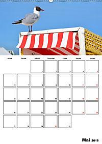 Langeoog - eine Trauminsel (Wandkalender 2019 DIN A2 hoch) - Produktdetailbild 5