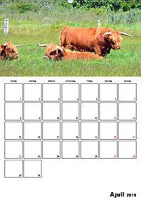 Langeoog - eine Trauminsel (Wandkalender 2019 DIN A2 hoch) - Produktdetailbild 4