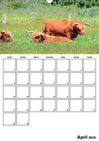 Langeoog - eine Trauminsel (Wandkalender 2019 DIN A3 hoch) - Produktdetailbild 4
