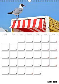 Langeoog - eine Trauminsel (Wandkalender 2019 DIN A3 hoch) - Produktdetailbild 5