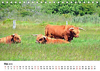 Langeoog - Sommer, Sonne, Strand (Tischkalender 2019 DIN A5 quer) - Produktdetailbild 5