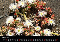 Lanzarote Beautiful Canary Island (Wall Calendar 2019 DIN A4 Landscape) - Produktdetailbild 3