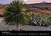 Lanzarote Beautiful Canary Island (Wall Calendar 2019 DIN A4 Landscape) - Produktdetailbild 11