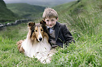 Lassie kehrt zurück - Produktdetailbild 1