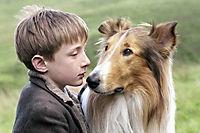 Lassie kehrt zurück - Produktdetailbild 6