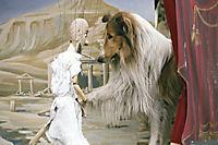 Lassie kehrt zurück - Produktdetailbild 5
