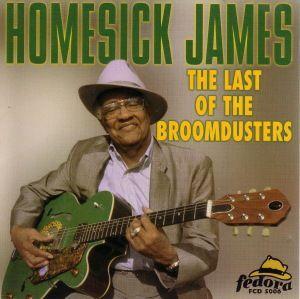 Last Of The Broomdusters, Homesick James