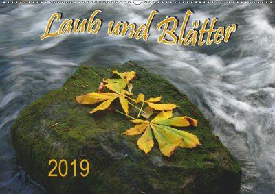 Laub und Blätter 2019 (Wandkalender 2019 DIN A2 quer), Bildagentur Geduldig